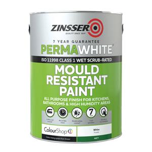Mould Resistant Paint