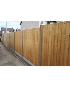 Elite Birch Fence Panel