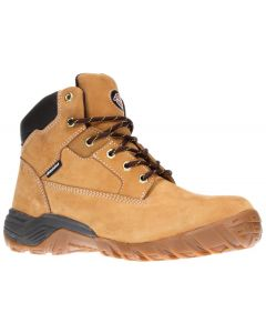Dickies Graton Safety Boot Honey Size 9