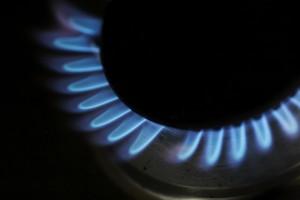 Gas hob burner
